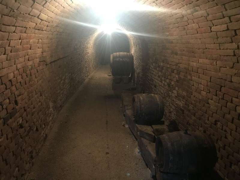 Grundstück in 3701 Großweikersdorf - 9
