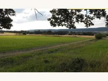 Ackerbau in Strögen /